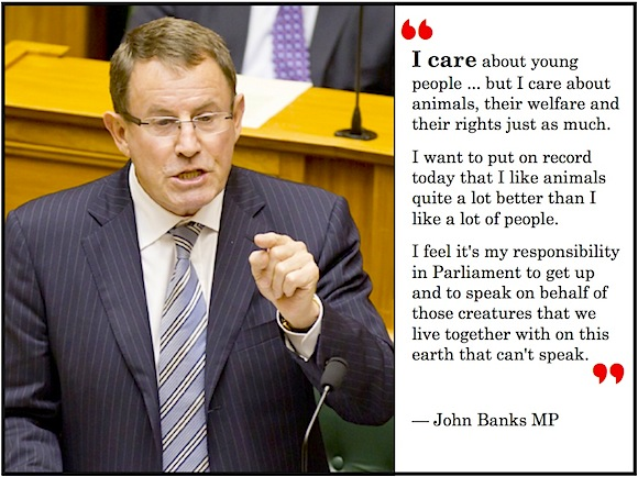 John Banks animals-care