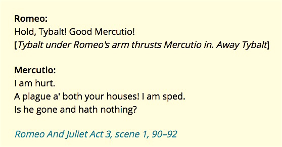 A_plague_on_both_your_houses_-_eNotes_Shakespeare_Quotes